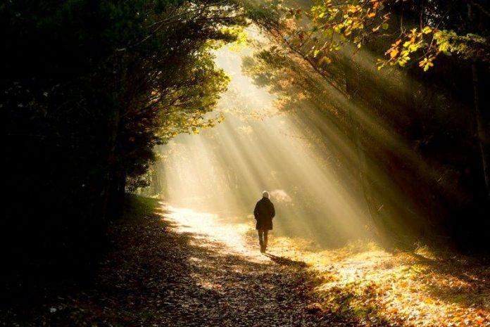 """Αποτέλεσμα εικόνας για πνευματικό Φως"""""""